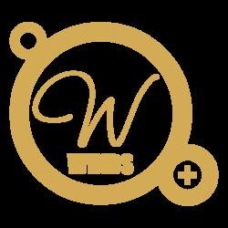 Le Windsor Bar Cocktails Lille Logo